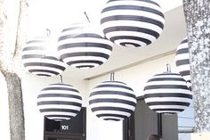 black & white striped paper lanterns. NEED IMMEDIATELY.