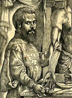 Andreas Vesalius (31 December 1514 – 15 October 1564) was an anatomist, physician, and author of one of the most influential books on human anatomy, De humani corporis fabrica (On the Fabric of the Human Body).