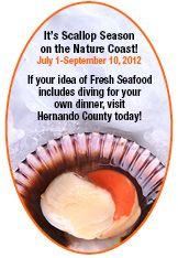 Hernando County Florida - Great Florida Birding Trail - Florida Nature Photography