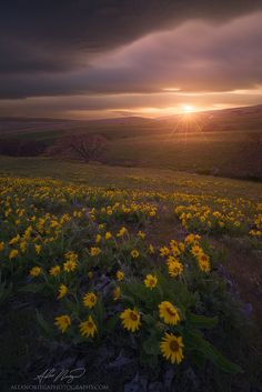 Photo Sky Hills by Alex Noriega on 500px