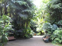 Camellia Gardens, began back in 1970 as a Captain Cook Bicentenary Project. Parks In Sydney, Camellia, Garden Wedding, Perfect Place, Places To Go, Picnic, Gardens, Cook, Plants