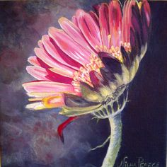 "For Sale: Study in Pink by Nilha  Pearce | $250 | 8""w x 8""h | Original Art | http://www.vangoart.co/buy/art/study-in-pink @Vango"