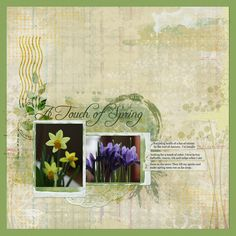 Just found this in the Scrap Art studio Gallery. It's so beautifully soft and relaxing. I have something to learn from her brushwork. She combined items from different kits by Cilenia Curtis and Angie Young.