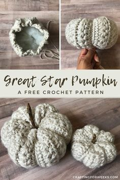 Crochet Pumpkin Pattern, Easy Crochet Patterns, Free Crochet, Crochet Baby, Crochet Fall Decor, Autumn Crochet, Fall Patterns, Pumpkin Patterns, Flower Patterns