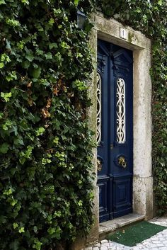 centered door knobs framed by greenery