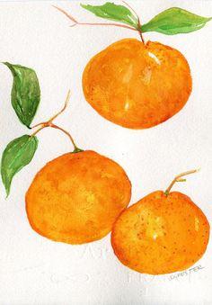 Mandarin Oranges, Leaves Watercolors Paintings Original, Fruit 5 X Original  Citrus ART, Original Watercolor Painting Of Oranges, Kitchen