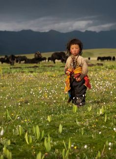 Sichuan > Nomads of Litang