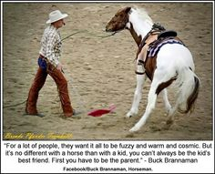 Buck Brannaman discusses horse discipline, or 'parenting' - so many people get hurt thinking their horse is being affectionate when they are actually challenging for leadership- move their feet and get them out of your space! Horses And Dogs, Show Horses, Buck Brannaman, Equine Quotes, Equestrian Quotes, Inspirational Horse Quotes, Horse Riding Quotes, Horse Training, Training Tips
