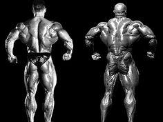 Mr. Olympia Dorian Yates vs. Mr. Olympia Ronnie Coleman. 2 Bodybuilding legends