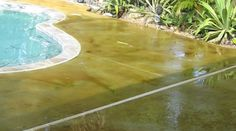 Acid Stains & Epoxy - European Sculptured Stone - Decorative Concrete Designs Pool Decking Concrete, Acid Stain, Decorative Concrete, Concrete Design, Pool Decks, Epoxy, Things To Come, Stains, Outdoor Decor