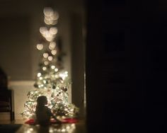 ©️️ Summer Murdock Utah Photographer, Freelensing, Christmas tree photos, Christmas lights