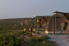 Beach Flower Camp From: Discount: Regular Price: Valid for: RSA & International residents Type of Special: Advance Location: Namaqualand ENQUIRE NOW Rates for Beach Flower Camp: Special available Beach Camping, Tent Camping, Glamping, Wilderness Explorer, Beach Flowers, Water Bucket, Dome Tent, Shower Systems, Entrance