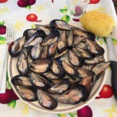 Le cozze tarantine sono il frutto del lavoro di antichi pescatori che, tra i citri del Mar Piccolo, ne iniziarono la coltivazione oltre 1000 anni fa Scopri di più: http://www.madeintaranto.org/cozze-taranto/  #Taranto #Puglia #cittadavivere #citywiew #Italy #Madeinitaly #Madeintaranto