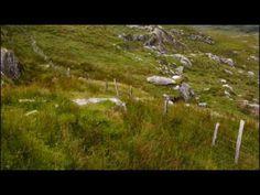 patrick ball - celtic harp music