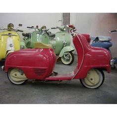 French scooter Terrot  via ✨ @padgram ✨(http://dl.padgram.com)