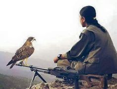 Kurdish guerrilla on mountain top with an eagle✌🏻 🦅 Women Freedom Fighters, Lion And Lioness, Outdoor Girls, Female Fighter, Instagram Frame, Female Soldier, Military Women, Girl Photography Poses, Bald Eagle