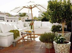 Roof terrace garden design is a type of garden on the roof of the building.