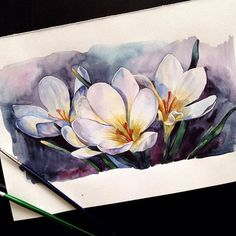 Watercolorist: @y_yumaeva  #watercolor #waterblog #акварель #aquarelle…
