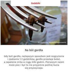 spryciarze.pl.14012371308588