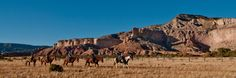 The spectral draw of New Mexico's Ghost Ranch – The Denver Post