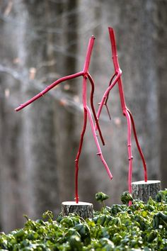 DIY Tutorial - Red Dancing Sticks for the garden by Ashbee Design