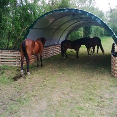 """Abri Tunnel demi lune largeur 6 metres, Abris de jardin Tunnel en 6m, Abris demi lune"" I think it also helps against wet muddy small passages between pastures"