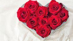 Find out: Love Rose wallpaper on  http://hdpicorner.com/love-rose/