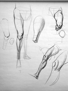 Body anatomy, anatomy art, anatomy sketches, anatomy for artists, Human Anatomy Drawing, Human Figure Drawing, Figure Drawing Reference, Anatomy Reference, Pose Reference, Leg Anatomy, Anatomy Study, Anatomy Art, Drawing Legs