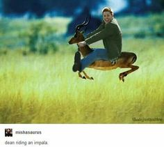 Welcome to the Supernatural fandom. Enjoy your newfound insanity