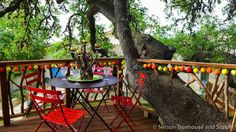 Laurel Tree Restaurant treehouse in Utopia, TX