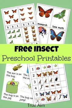 free insect preschool printables