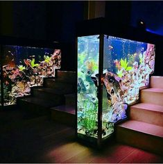 26 Best Home Stairs Design Ideas With Aquarium - Aquarium decorations have the tendency to look rigid and lifeless. If you look at the various types of fish tank decorations sold, they mainly depict .