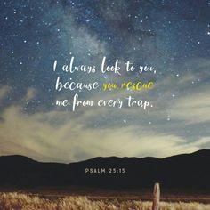 Psalm 25:15 #Psalms #Faith
