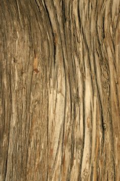 Photoshop free wood textures set