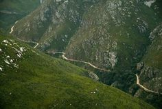 Swartberg Mountain Pass in the Klein Karoo offer the UNESCO world heritage site with nature,caves,ostriches,protea flowers.