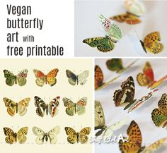Vegan butterfly art - great idea for making mounted butterfly display without harming butterflies!