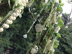 Outdoor decorations - arbor ideas - pearls - white and green - lemon leaf - hydrangeas - green hanging amaranths - bling and crystals - fairytale wedding ideas - Outside ceremony - Wedding flowers and decorations - Knoxville TN Florist - Lisa Foster Floral Design - www.lisafosterdesign.com