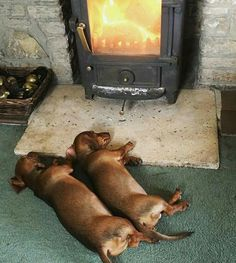 Warm...