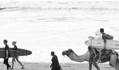 X. Surfing Morocco  http://www.surfmaroc.co.uk/  http://www.surfmaroc.co.uk/services_girls_surf.php