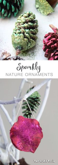 Sparkly nature ornam