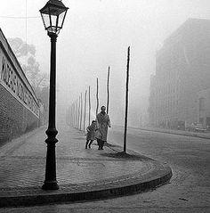 in the shadow of the wind.  La sombra del viento, Carlos Ruiz Zafon.