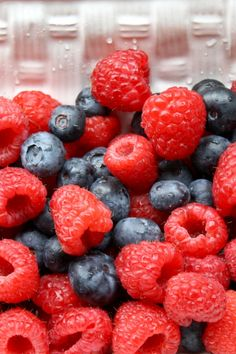 How to Keep Berries Fresher Longer brightboldbeautiful.com