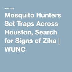 Mosquito Hunters Set Traps Across Houston, Search for Signs of Zika | WUNC