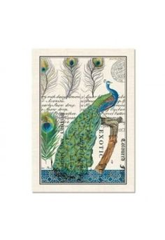 Take a look at this Michel Design Works Peacock Kitchen Towel - Set of Three on zulily today! Peacock Crafts, Peacock Decor, Peacock Art, Peacock Feathers, Peacock Colors, Peacock Shower Curtain, Peacock Bathroom, Shower Curtains, Dainty Doll