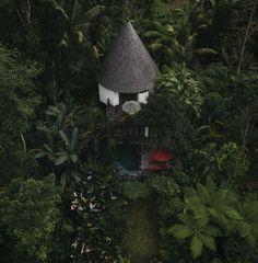 Cabin by Jonas Hafner Cabin, Bird, Outdoor Decor, House, Inspiration, Home Decor, Biblical Inspiration, Decoration Home, Home
