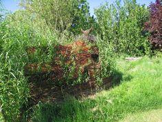 living willow den.
