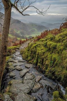 Coniston, Cumbria Region, England. Coniston is a popular spot for hill-walking and rock-climbing; there are fine walks to be had on the nearby Furness Fells and Grizedale Forest, and some of the finest rock in the Lake District on the eastern face of Dow Crag, 3 miles from the village. (V)