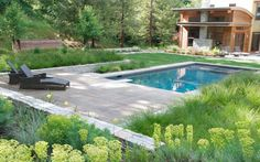 The slightly wild and informal plantings around the pool give it a great casual feel