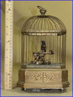 cage « Music Boxes