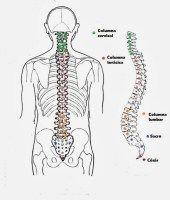 ¿Qué es la  cirugía percutánea de columna ? #salud http://blgs.co/WS07yK